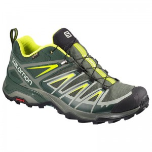 Buty Salomon X Ultra 3 GTX Dark Spruce