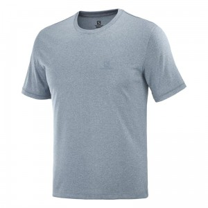 Koszulka Salomon Cotton Tee Bleu Gris / Ashley / Heather