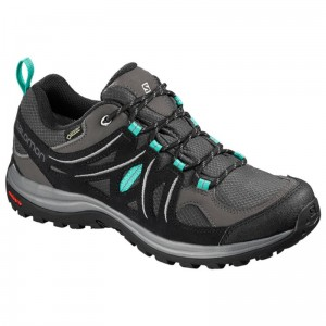 Buty Salomon Ellipse 2 GTX W Magnet
