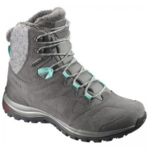 Buty Salomon Ellipse Winter GTX Castor Gray