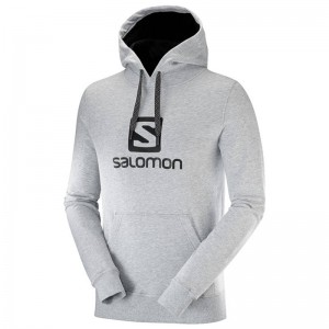 Bluza Salomon Logo Hoodie Light Grey