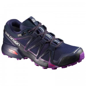 Buty Salomon Speedcross 2 GTX Vario W Astral