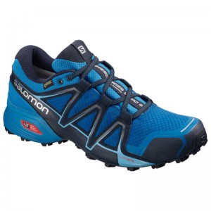 Buty Salomon Speedcross Vario 2 GTX Sky Dive