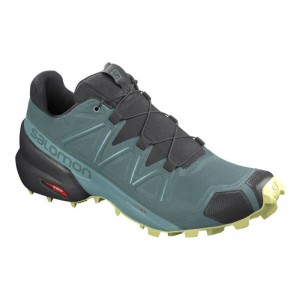 Buty Salomon Speedcross 5 W North