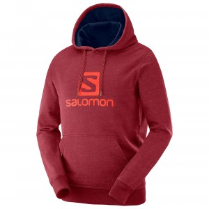 Bluza Salomon Logo Hoodie Biking Red