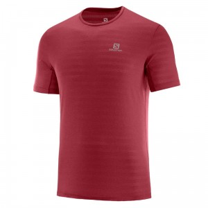 Koszulka Salomon XA Tee Biking Red
