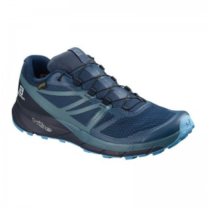 Buty Salomon Sense Ride 2 GTX Invisible Fit