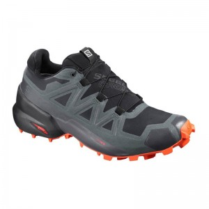 Buty Salomon Speedcross 5 GTX Black/Urban Chic