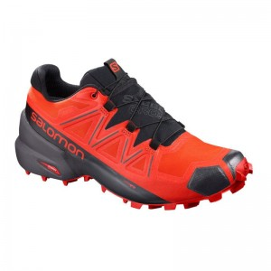 Buty Salomon Speedcross 5 GTX Valian/Black/Cherry