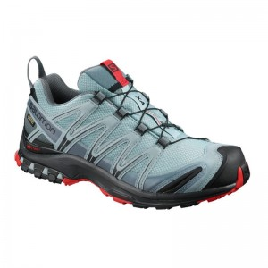 Buty Salomon XA PRO 3D GTX Lead/Black/Barbados