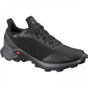Buty Salomon Alphacross GTX Black