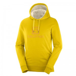 Bluza Salomon Logo Hoodie Lemon Curry