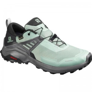 Buty Salomon X Raise GTX W Green Milieu