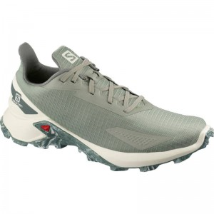 Buty Salomon Alphacross Blast Shadow