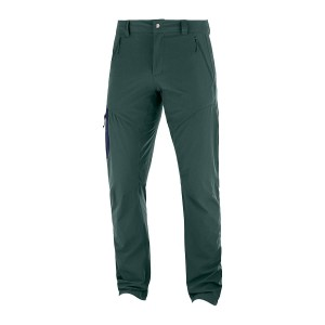 Spodnie Salomon Wayfarer Tapered Green