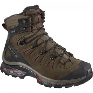 Buty Salomon Quest 4D 3 GTX W Brown