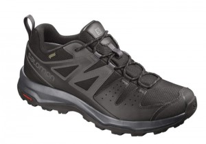 Buty Salomon X Radiant GTX Black