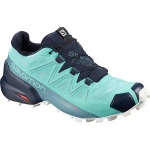 Buty Salomon Speedcross 5 GTX W Meadowbrook