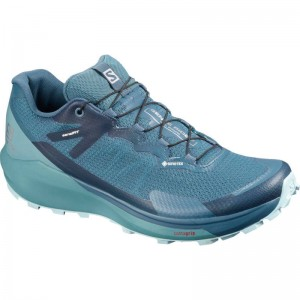 Buty Salomon Sense Ride 3 GTX Invisible Fit W