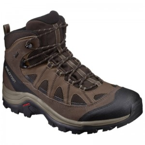 Buty Salomon Authentic LTR GTX Coffee