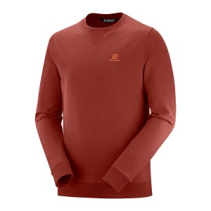 Bluza Salomon Shift Crewneck Madder Brown