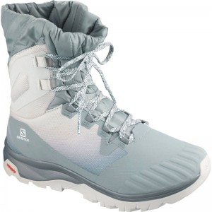 Buty Salomon Vaya Powder TS CSWP Lead