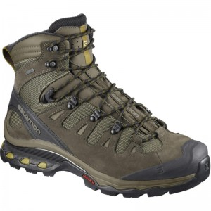 Buty Salomon Quest 4D 3 GTX Brown