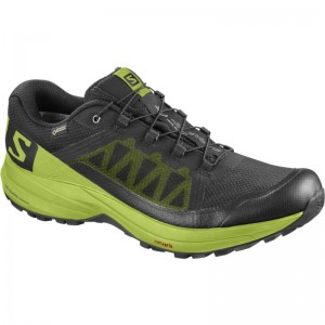 Buty XA Elevate GTX Black/Lime