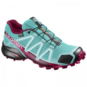 Buty Salomon Speedcross 4 GTX W Ceramic