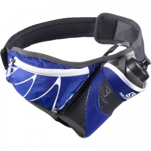 Pas Salomon Sensibelt Surf the Web