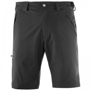 Spodenki Salomon Wayfarer Short Black