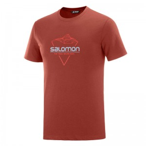 Koszulka Salomon Blend Logo Madder Brown